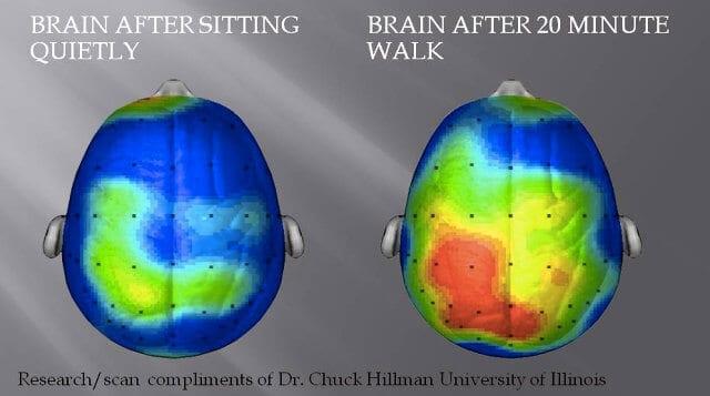brain on walking