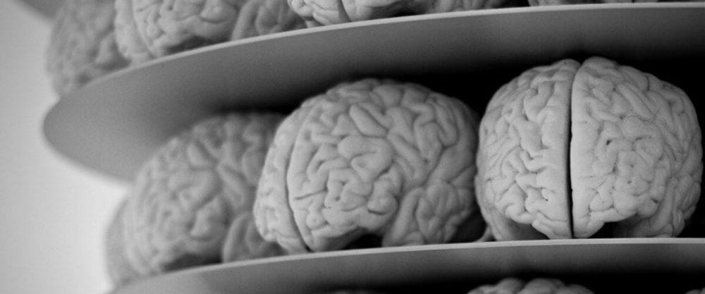 ways to improve your brain performance